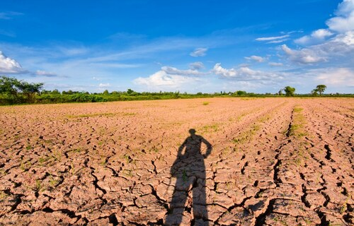 Foto: Ministério da Agricultura, Pecuária e Abastecimento