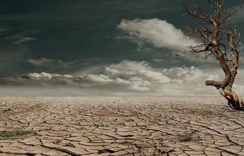 Paisagem desértica, com solo rachado pela falta de água. Foto: Marion/Pixabay)