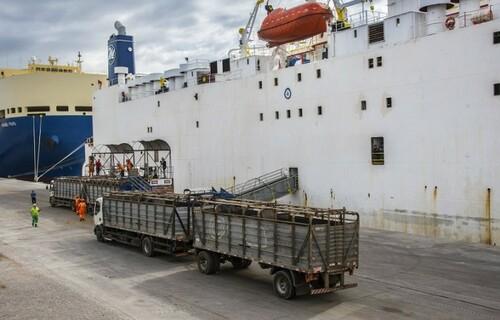 Exportação - Foto: Governo do Rio Grande do Sul