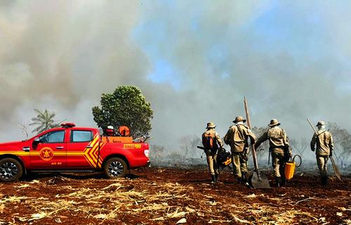 Corpo de Bombeiros de MS combatem incêndios florestais. Foto: Chico Ribeiro/Portal do Governo de Mato Grosso do Sul
