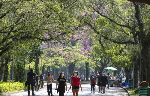 Pessoas no Parque Ibirapuera. Foto: Rovena Rosa/Agência Brasil