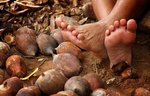 Quebradeira de coco do Maranhão. Foto: Arquivo/EBC