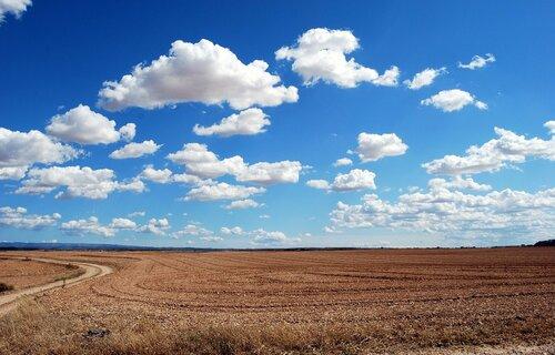 Plantação em situação de estiagem. Foto: Gianni Crestani (Pixabay).