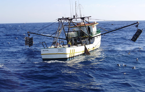 Foto: Secretaria da Agricultura, da Pesca e do Desenvolvimento Rural