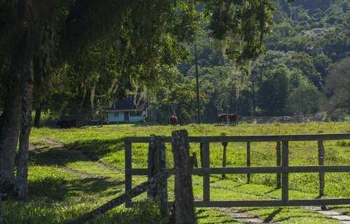 Imóvel Rural - Foto: Prefeitura de Timbó-SC